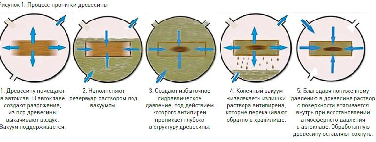 Схема пропитки древесины